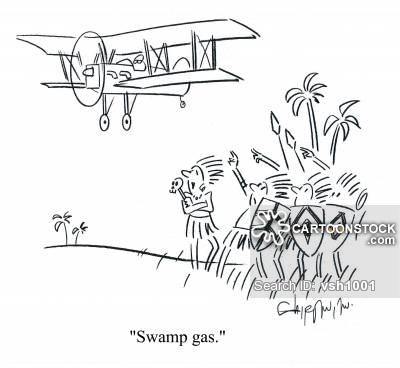 'Swamp gas.'