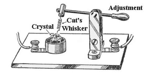 catwhisker