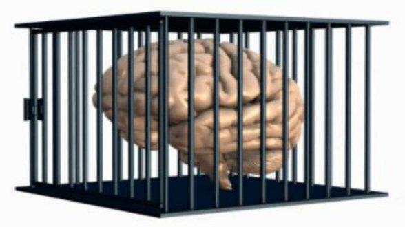 brain-hubris