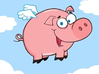 pigflying